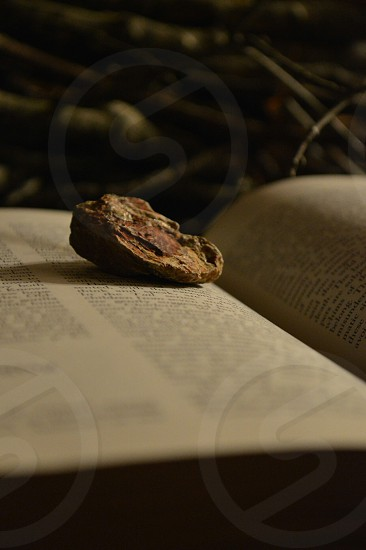 brown stone on book page photo
