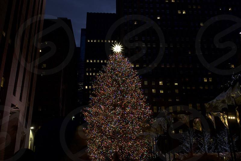 Christmas at Rockefeller Center NYC      photo