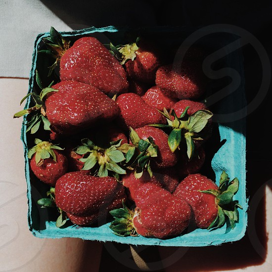 red strawberry fruit on blue container photo