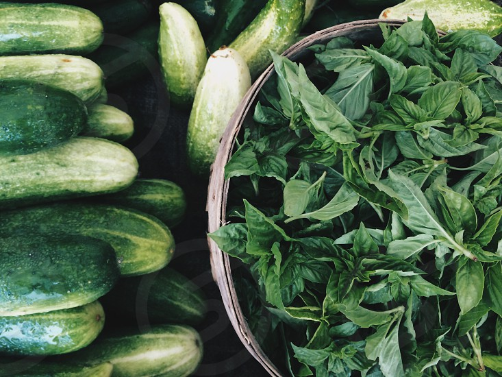 Green basil cucumber market food  photo