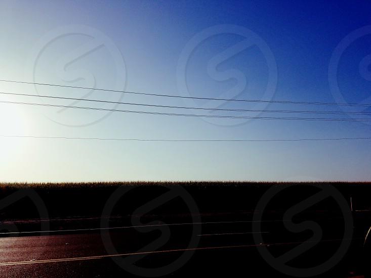 Sunrise over corn field photo