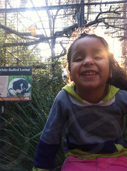 Child exploring the zoo photo