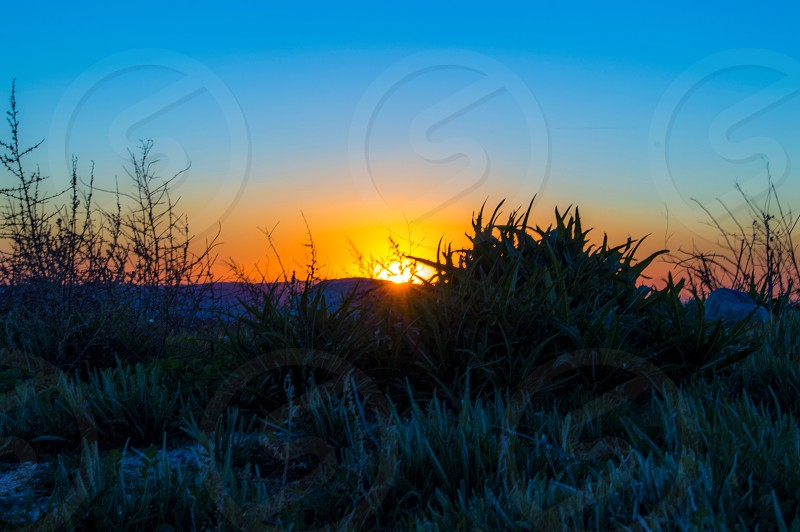 golden hour landscape photograph photo