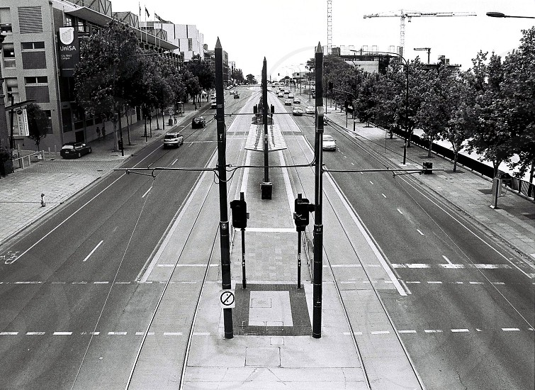 Tramlines South Terrace Adelaide  photo