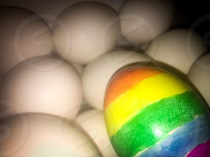 Rainbow egg photo