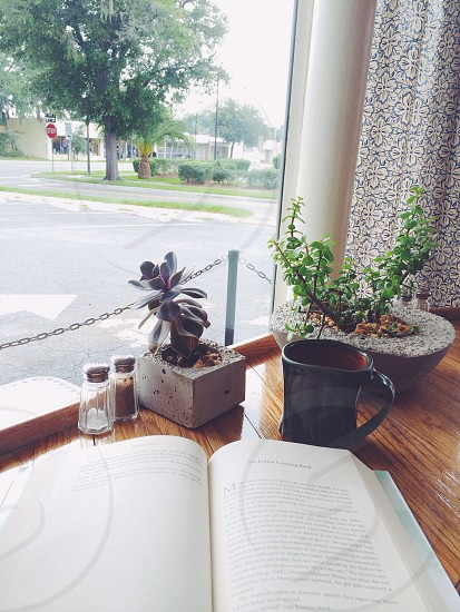 Local bakery café window looking out on a weekend morning (Saturday most likely) with coffee a good book and some potted succulent plants on the wooden countertop. Reading a novel and enjoying breakfast or brunch on a sunny day.  photo