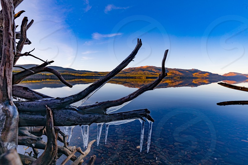 Calm late fall day at Kinaskan Lake with ice coated shore driftwood in foreground of autumn colored landscape of northern British Columbia BC Canada photo