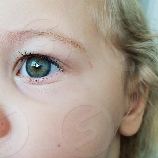 brown left eye of a person photo