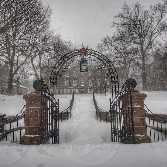 College university blizzard winter snow historical travel cold cloudy photo