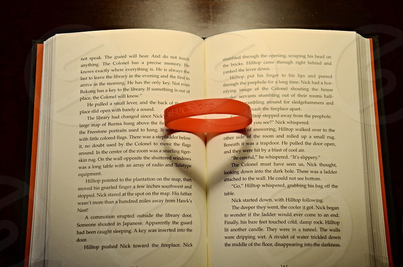 red rubber band on open book photo
