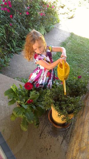 helping water flowers photo