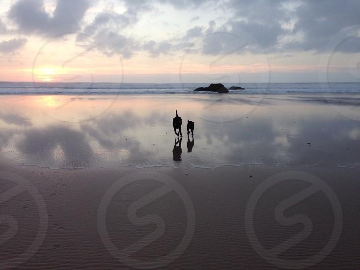 Mawgan Porth Cornwall photo