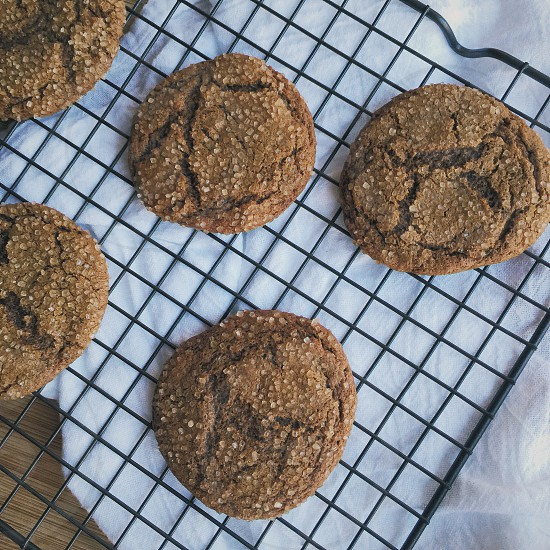 Molasses Cookies  photo