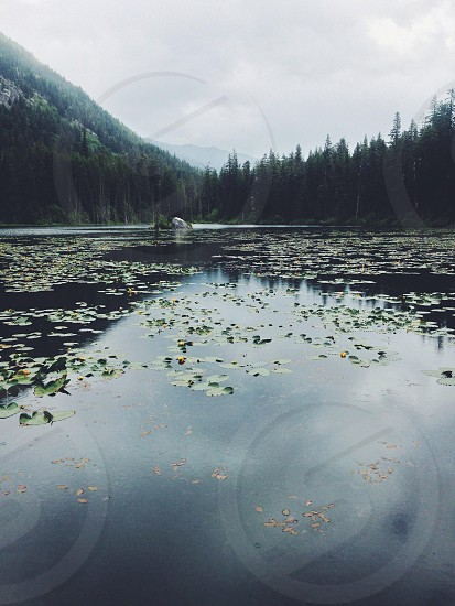 Coon Lake. Stehekin Valley WA photo