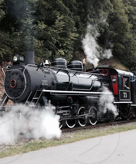 train steam outdoors trees green black red transportation photo