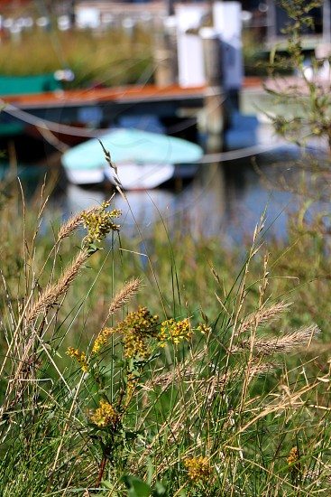Rowboat docked in sea brass photo