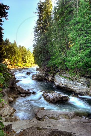 Falls rapids river water forest photo