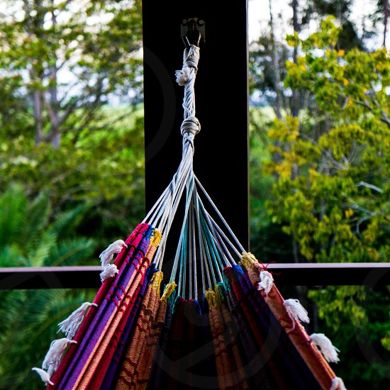 selective focus photography of purple and multicolored hammock photo