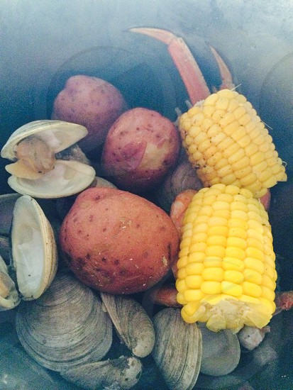 clam bake with corn photo