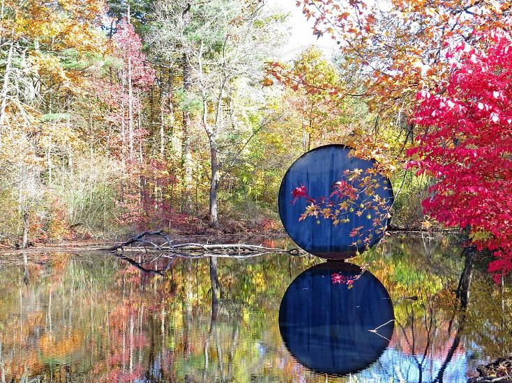 Reflected Circle  photo