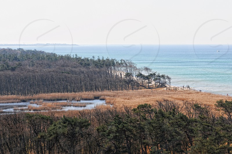 Darsser Ort at Baltic sea beach on Darss peninsula with typical sand dune landscape and pine tree. aerial view. (Mecklenburg-Vorpommern Germany) photo