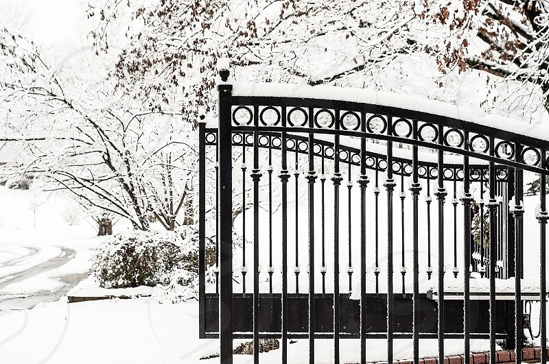 """WINTER WONDERLAND 