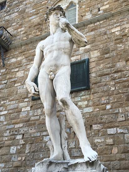 David of Michelangelo statuemonumentartcarvedflorencetuscanyitaly photo