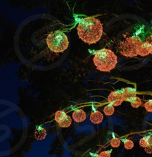 pop of color lights at night light balls tree photo