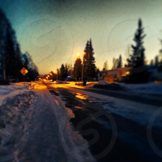 Cold night  photo