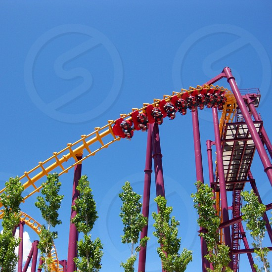 peopleyellow and purple rollercoaster photo