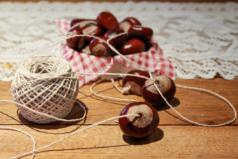 Conkers game childhood string horse chestnut photo