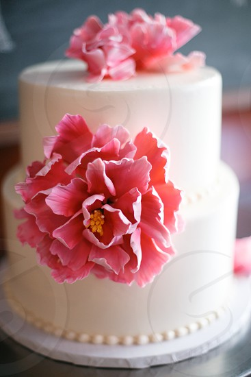white 2 tier cake with pink flower frosting photo