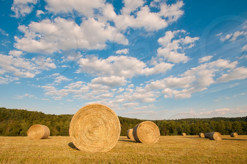 hay bales and blue sky photo
