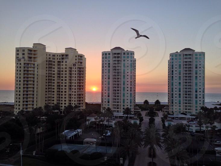 Clearwater Beach FL photo
