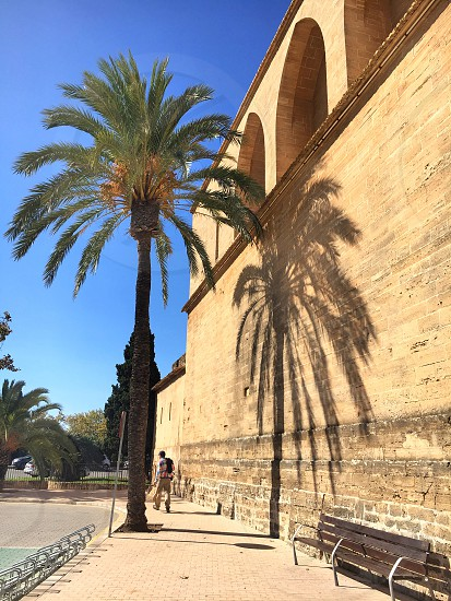 Church of St Jaume Alcudia photo