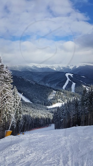 Beautiful view of Carpathians mountain range with the fir forest background in a cold and snowy winter day. Travel tourism hiking and trekking concept. Bukovel Ukraine. photo