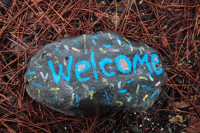 gray stone pebble photo