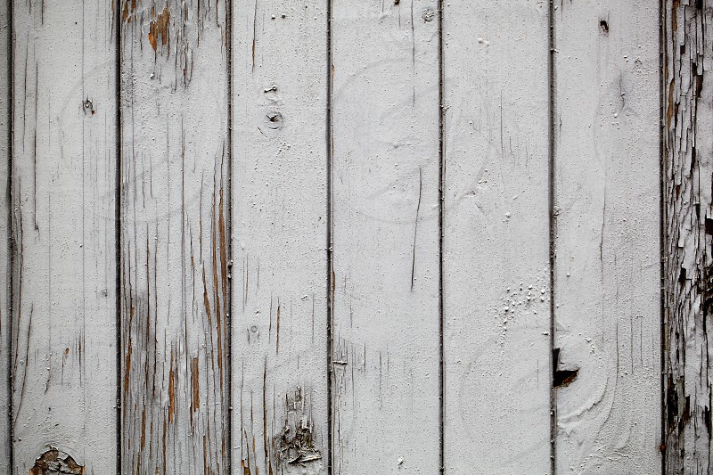 Macro shot of the grey wooden wall vintage background. Horizontal shot. photo