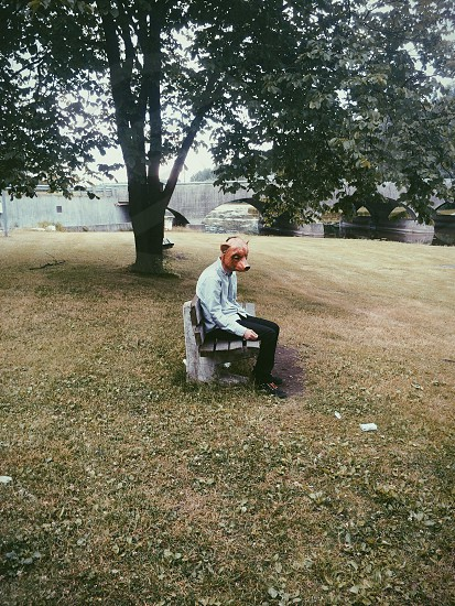 person wearing an animal head sitting on a bench photo