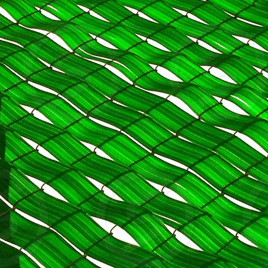 white green black leaf like artwork photo