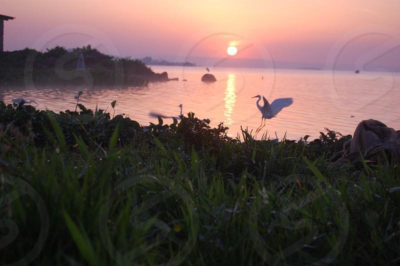 seaside view photo
