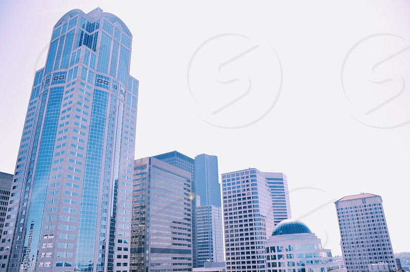 high rise buildings photo