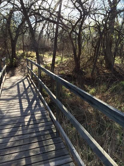 Hiking trail in San Angelo Texas near Lake Nasworthy.  photo