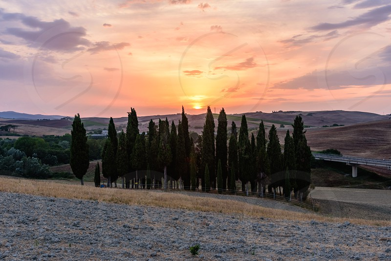 Scenic sunset in Val d'Orcia with cypress trees in foreground photo