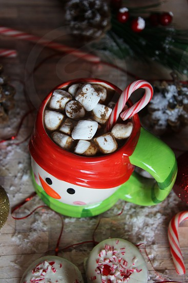 cocoa chocolate marshmallow candy hot sweet candy cane photo