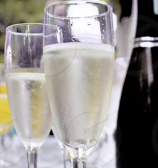 A time for celebration with prosecco sparkling wine photo