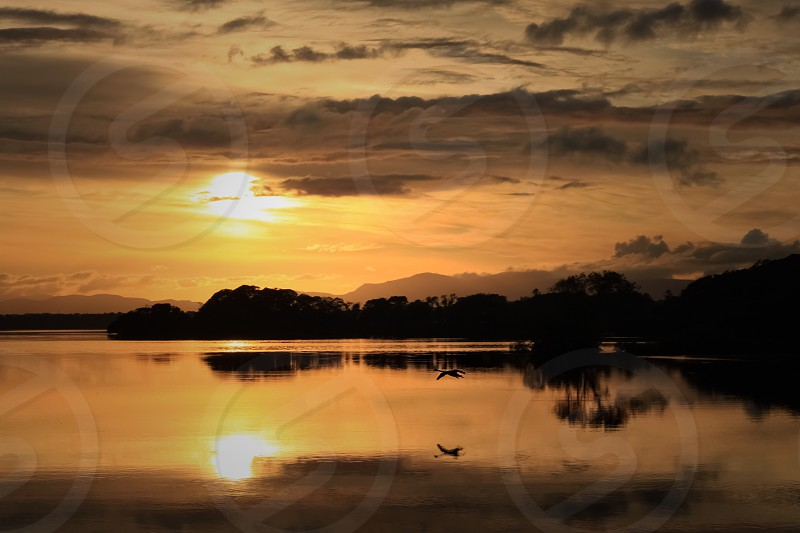 Sunset lake reflection landscape ireland Killarney park serenity scenic colourful bird swan goose  photo