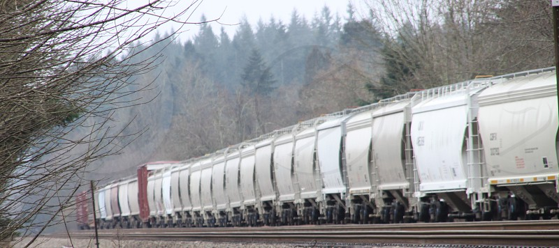 Some train cars sitting on a siding waiting to be picked up.  photo