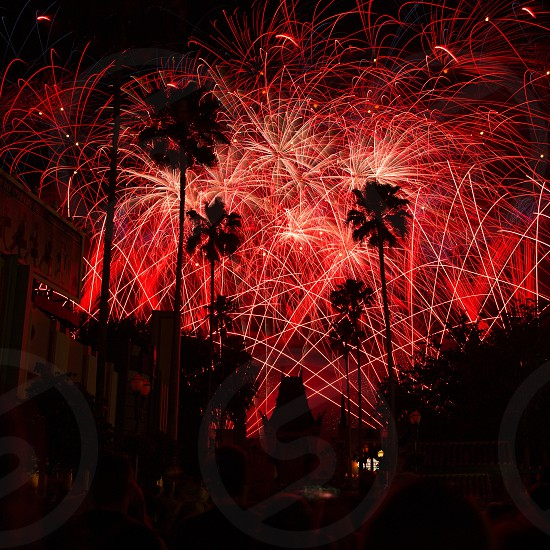 Star Wars fireworks at Disney's Hollywood Studios photo