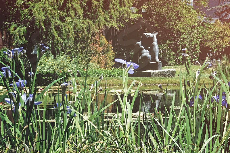 Detail of the sculpture gardens at the Norton Simon Museum photo